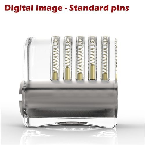 Sparrows Clear Acrylic lock Standard Pins